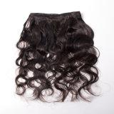 Perruque crépue brésilienne d'enroulement d'Afro de Vierge de paquets d'armure de cheveu d'enroulement