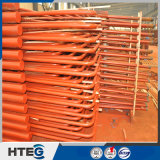 Surriscaldatore e riscaldatore radianti per i pezzi di ricambio della caldaia ad alta pressione
