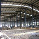 Diseño moderno almacén de la estructura de acero de larga duración