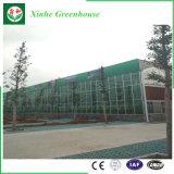 De landbouw prefabriceerde Één Groen Huis van het Glas van de Tuinen van het Einde