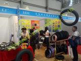 3.00-17for Buis van de Motorfiets van China van de Markt van Afrika de Natuurlijke