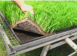 Geotêxtil da nutrição para projetos da paisagem do Riverbank