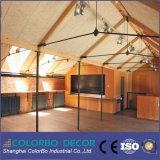 Comitati acustici decorativi ed acustici delle lane di legno
