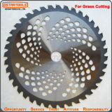 40t Sks Tungsten Carbide Tipped Saw Blade pour la coupe de l'herbe