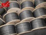Corde galvanisée du fil d'acier 6X7+FC/Iws/Iwrc pour la moto