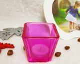 최신 인기 상품 다채로운 유리제 초 단지