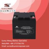 Batería de almacenaje sin necesidad de mantenimiento sellada del gel 12V 28ah para el sistema eléctrico solar