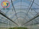 Serres van de Film van de Spanwijdte van de landbouw de Multi voor het Planten van de Bloem