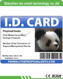 De Fotografische Identiteitskaart van uitstekende kwaliteit van het Bureau van het Personeel