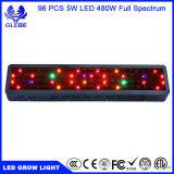 LED lampe de feu de grandir, usine Lampat croître de lumière pour serre Hydropoics organiques 3 bandes de 240 W