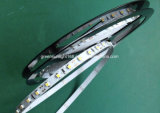 Tira do diodo emissor de luz para o teto falso