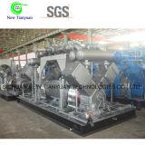 병 채우는 산업을%s 천연 가스 CNG 압축기