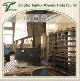 Madera contrachapada de la madera dura de la venta directa de la fábrica para la construcción