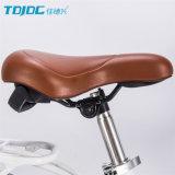 Tdjdc 도매를 위한 유압 디스크 브레이크 도시 자전거 또는 자전거