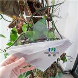 strati liberi del policarbonato di 10mm con il rivestimento UV di protezione