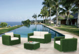 Osier de patio de jardin/sofa de rotin réglé - meubles extérieurs (LN-3027)