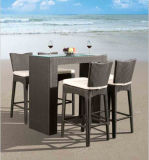 Staaf stoel-1 van de Keuken van de Stoelen van de Barkrukken van de barkruk
