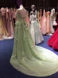 Abend-Kleid-reale Probe des Grün-2017