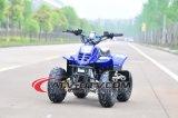 새로운 50cc 세륨 승인되는 아이 ATV (AT0501)