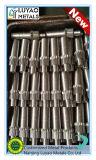 Подгонянная подвергая механической обработке шестерня глиста латуни/нержавеющей стали