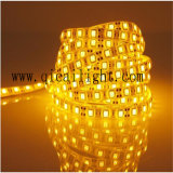 Tira flexible decorativa del brillo estupendo casero 5050 SMD LED del uso