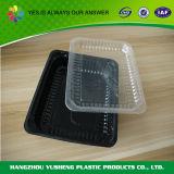 Casella di pranzo a gettare di plastica dello scompartimento