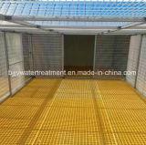 Rejas de la plataforma/de la fibra de vidrio de FRP/GRP Gratings/GRP
