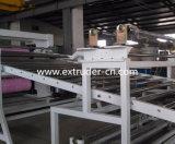 Panneau de mousse de plastique de PVC/ligne libres extrusion de plaque