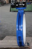 De volledige PTFE Met een laag bedekte Vleugelklep van de u- Sectie Met Goedgekeurd Ce ISO Wras (CBF04-TU01)