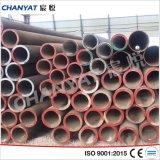 継ぎ目が無い合金鋼管および管A213 (T11、T12、T17)