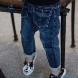 Jeans elastici del denim di stirata di nuovo stile per le ragazze dai jeans della mosca