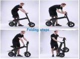 Велосипед E-Bike безщеточного мотора батареи лития дискового тормоза высокого качества 250W 36V складывая электрический с утверждением En15194
