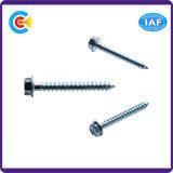DIN/ANSI/BS/JIS Stainless-Steel Carbon-Steel/4.8/8.8/10.9 douille hexagonale fendue en acier galvanisé avec des vis autotaraudeuses