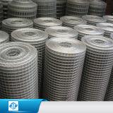 공장 가격 안핑 중국에서 Rolls에 있는 직류 전기를 통한 PVC에 의하여 입히는 용접된 철망사