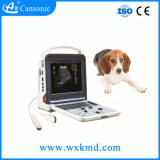 Color Doppler Trolley Veterinary Ultrasound Scanner