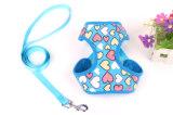 Fourniture de produits pour animaux de compagnie Dog Dog Dog Hose (H005)