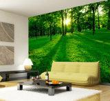 Настенные росписи стены ландшафта вала пущи Eco-Friendly популярной крытой собственной личности слипчивые