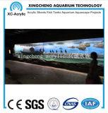 Modificó cualquier talla para requisitos particulares del proyecto material de acrílico de Fishbowl