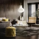 Освещение стеклянной белой декоративной горячей комнаты сбывания живущий привесное