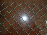 PVC Coated Chain Link Fence / Chain Link Fence / Wire Mesh