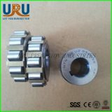SKF NTN rouleaux cylindriques cylindriques à rouleaux excitriques 25uz459 Rn232 Rn234 Rn236 Rn238 Rn240