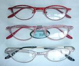 Gläser (GCS010)