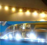 LEDのストリップ/LED棒/照明ストリップ