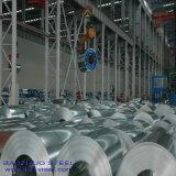 Galvanized Steel Coil Plate