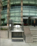 Система гидровлической неработающей кресло-коляскы поднимаясь с CE