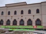 América del Norte de la madera de roble rojo sólido Round-Top Casement ventana con vidrio tallado