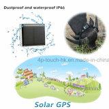 防水IP67 (V26)のペットのための小型太陽GPSの追跡者