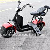 fetter Gummireifen Usun Harley Electric&#160 des Rad-1500W; Motorrad mit Cer