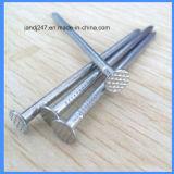 رأس مستديرة يصقل ساق حديد فولاذ مسمار لأنّ أثاث لازم خشبيّة في [غنغزهوو]
