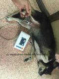 獣医の使用のためのZigbeeの手持ち型の忍耐強いモニタ